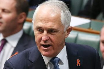 Prime Minister Malcolm Turnbull in Parliament