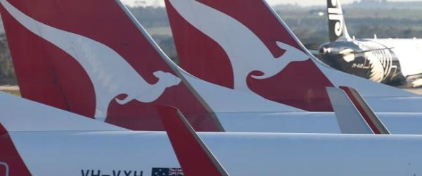 tails of Qantas planes lined up