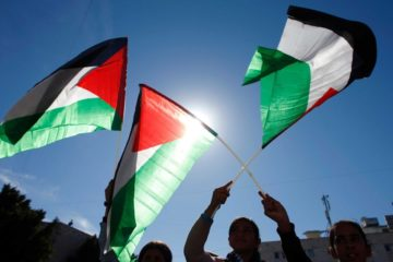palestinian flags being waved in support