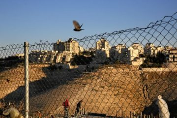 town in background with chain fence in foregrounda nd bird flying in air